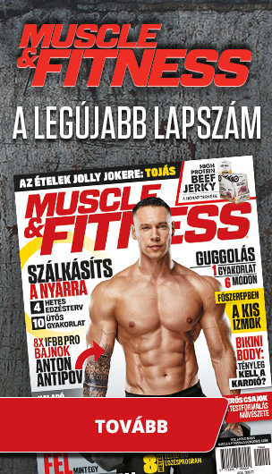 muscle-fitness-banner-asideright-001.jpg