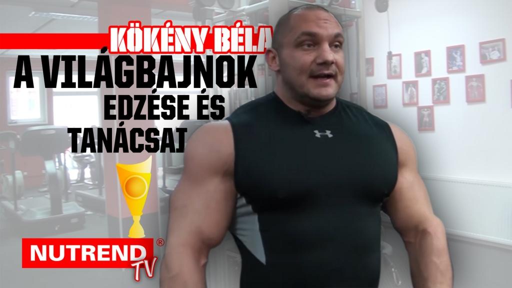 Kökény Béla
